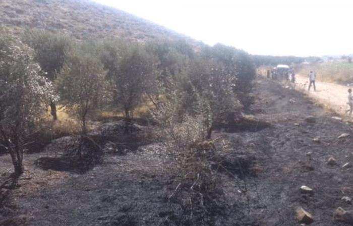 إخماد حريق في بلدة المقيبلة-عكار