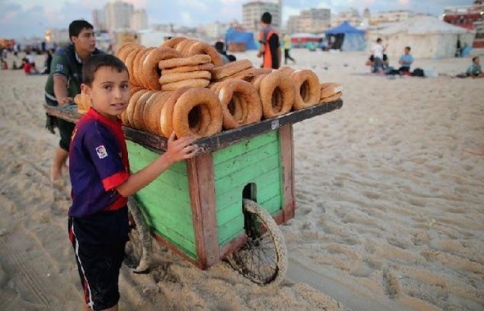فلسطين | عمالة الاطفال في قطاع غزة تثير جدلاً واسعاً