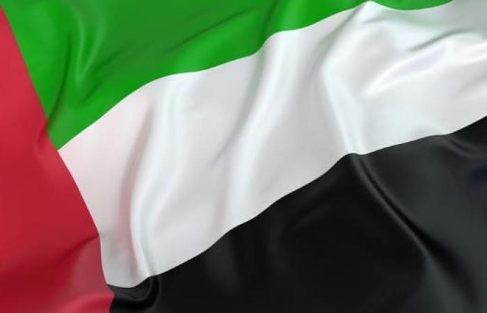 الخليح | الإمارات تجدد موقفها كشريك في تحالف دعم الشرعية باليمن