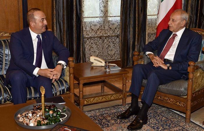 فلسطين وسوريا بين بري وجاويش أوغلو
