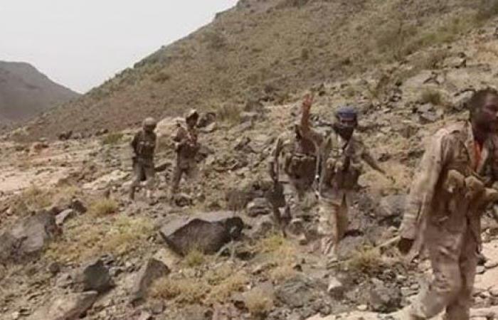 اليمن   الجيش اليمني يحرر مواقع جديدة في الجوف