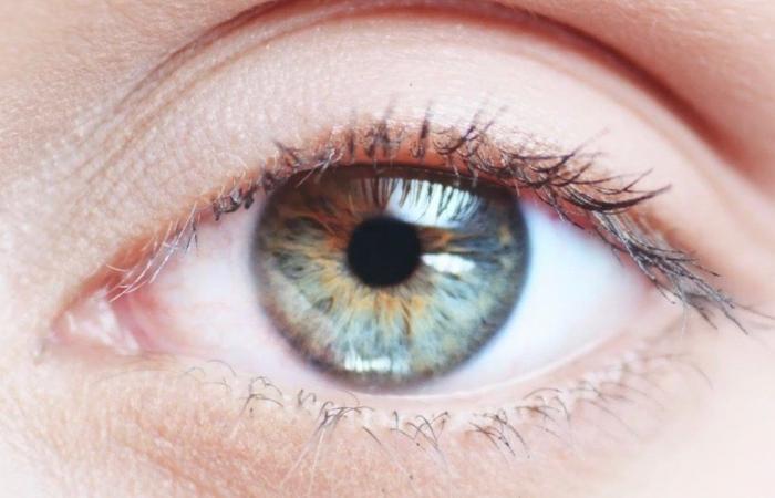خمس نصائح للحفاظ على صحة العين