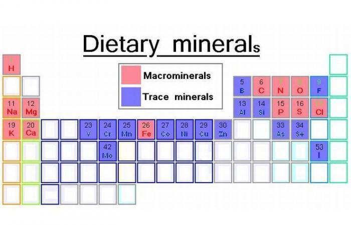 المغذيات الدقيقة: دورها في الجسم ومصادر الحصول عليها
