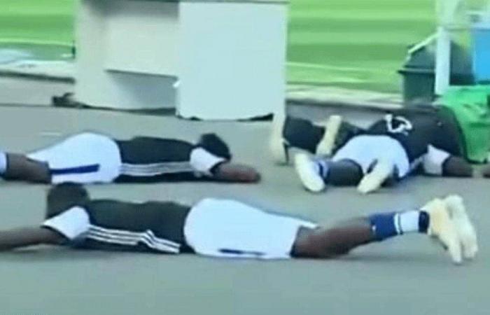 """هجوم نحل يجبر لاعبي كرة القدم على """"الانبطاح"""""""