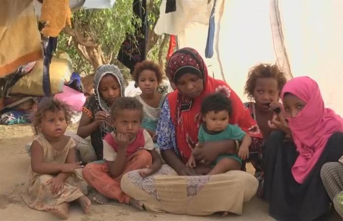 اليمن | أنفلونزا الخنازير يغزو صنعاء.. والميليشيات تخدع السكان