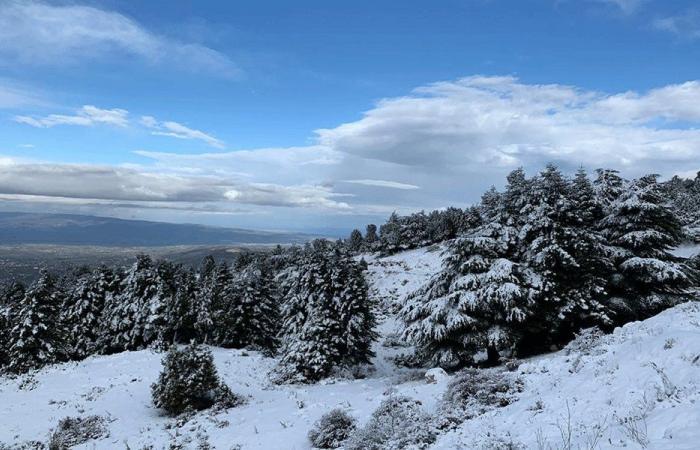 """""""لولو"""" تغطي لبنان بالثلوج: هذه هي أحوال الطقس"""