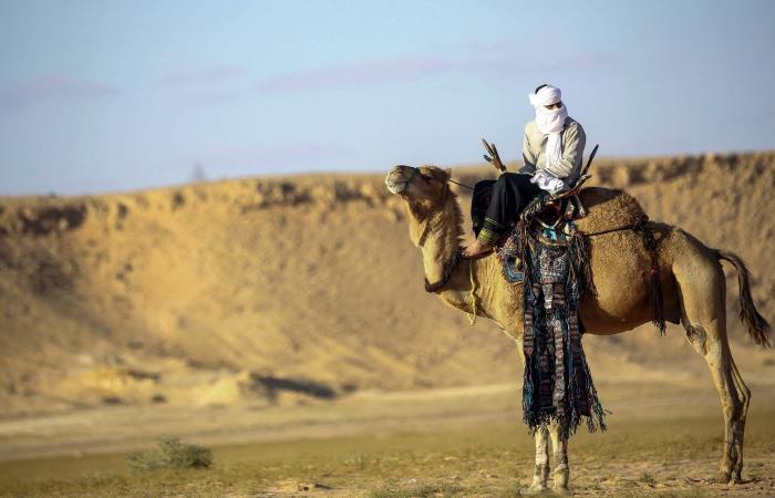 مثلث أسود بين ليبيا والنيجر والجزائر.. داعش في الصحراء