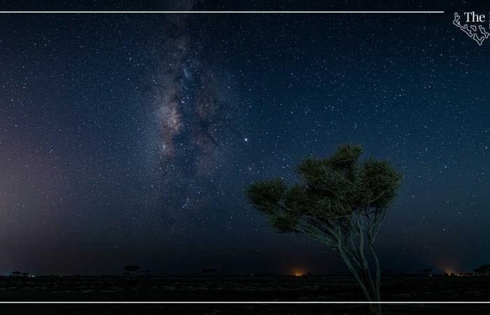 """السعودية   السعودية.. مشروع في البحر الأحمر حول """"سياحة النجوم"""""""