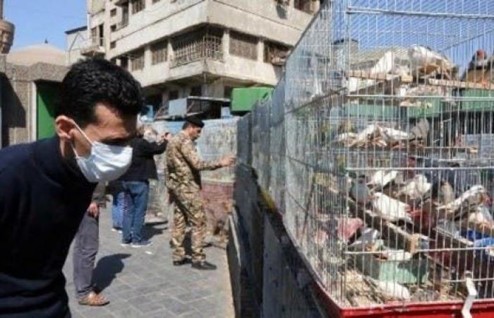 إيران   حصيلة جديدة بإيران.. 2336 مصاباً بكورونا و77 حالة وفاة