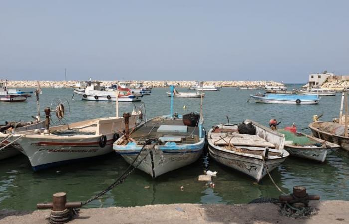 رئيس الجمعية التعاونية لصيادي الاسماك في بنين ناشد إنقاذ القطاع