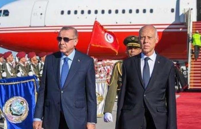 """نواب توانسة: تركيا تتسلل لانتهاك السيادة عبر """"النهضة"""""""