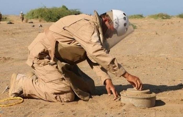 """السعودية   تعرف على """"مسام"""" الذي أزال 163 ألف لغم من الأراضي اليمنية"""