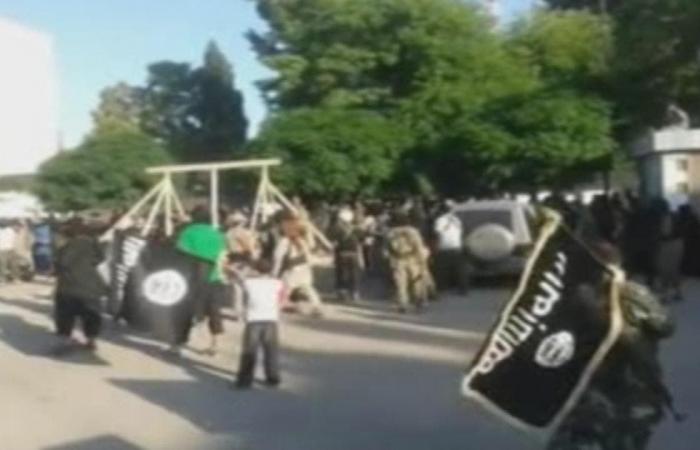 سوريا   خلال وجود داعش.. منظمة تدعو للتحقيق بمقبرة جماعية بسوريا