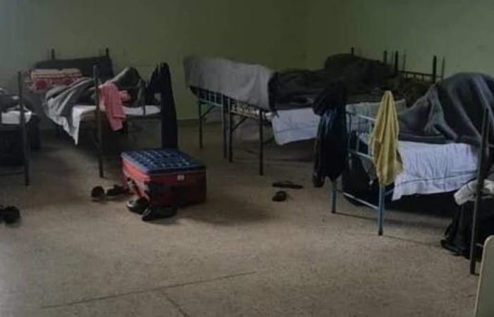 سوريا   حشرات من كل نوع تخيف محجوراً عليهم في سوريا