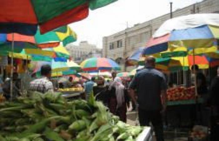 فلسطين   الاقتصاد: أتلفنا 67 طنًا وأحلنا 14 مخالفًا للنيابة