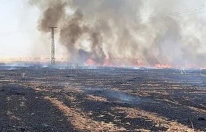 سوريا   النار تلتهم محاصيل تل تمر.. فصائل تركيا تفتعل الحرائق