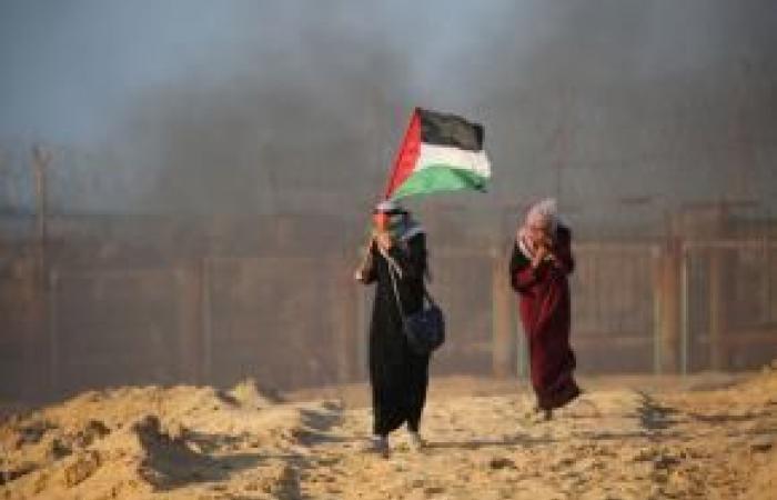 فلسطين | مركز الميزان يقدم شهادة أمام لجنة تحقيق دولية حول اعتدءات الإحتلال في فلسطين