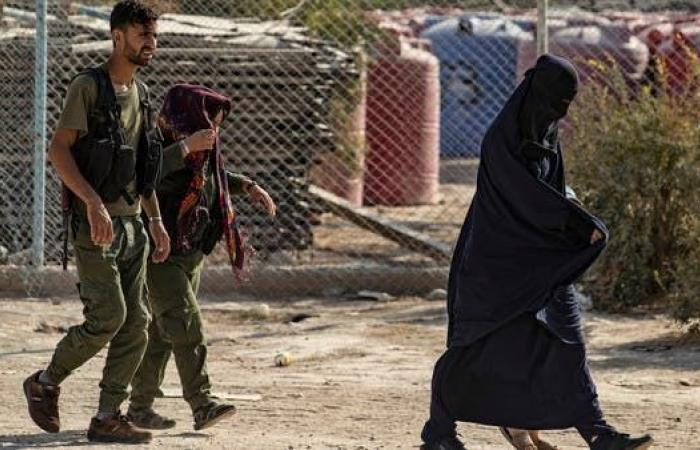 سوريا   حراك في مخيم الهول.. فحص جينات للداعشيات