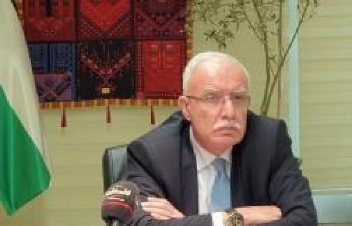 فلسطين   المالكي خلال الاجتماع الوزاري العربي الصيني: يجب انتهاج آلية عقوبات ومقاطعة وعزل لإسرائيل