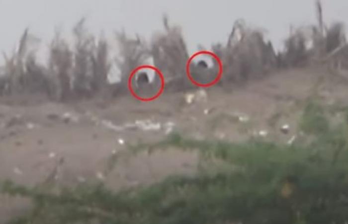 اليمن | فيديو.. مقتل9 قناصة حوثيين و3من مساعديهم بالحديدة