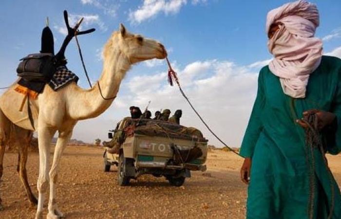 """مصر تتمسك بوحدة ليبيا.. """"لم نبحث تسليح القبائل"""""""