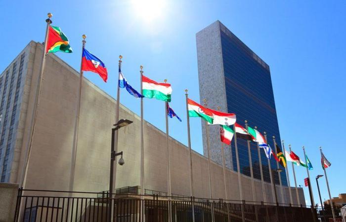 تنبيه الى لبنان… هيثم أبو سعيد لا علاقة له بالامم المتحدة!