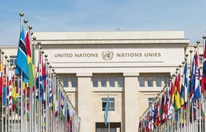الأمم المتحدة: الجرائم الإلكترونية تشهد زيادة حادة أثناء الوباء