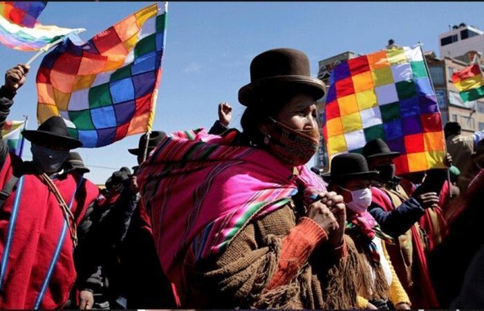 البرلمان البوليفي يشرع استخدام مبيض الملابس لعلاج كورونا