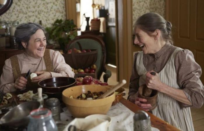 تبحث عن مسلسل مناسب للعائلة؟ 10 أسباب ستدفعك لمشاهدة Anne على نتفلكس