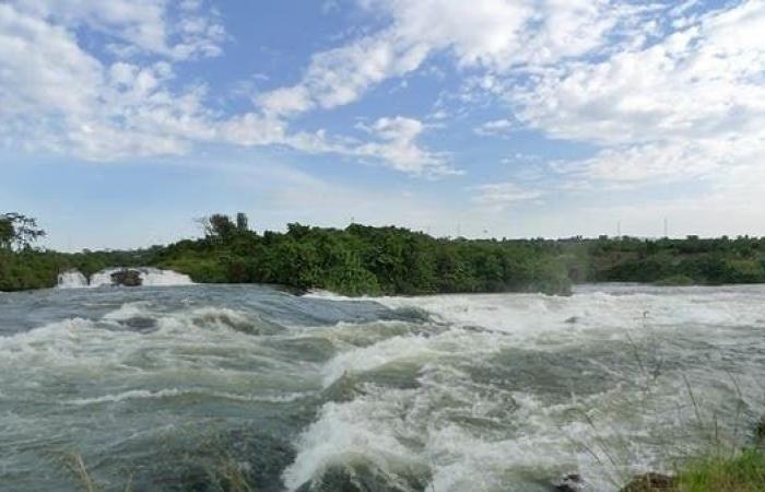 مصر   نهر النيل.. مؤشرات إيجابية للفيضان في أغسطس وسبتمبر