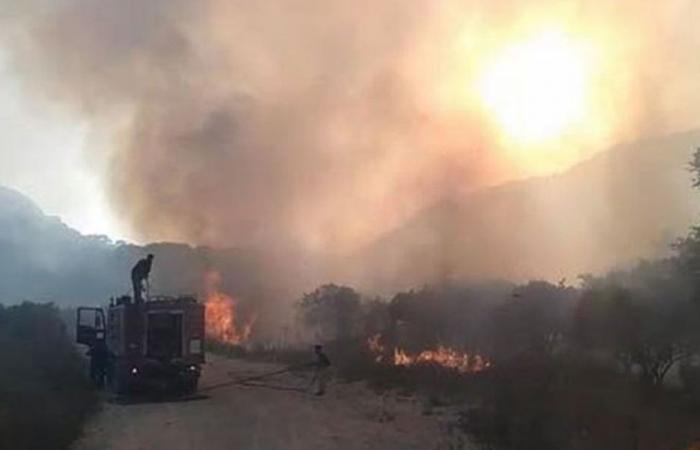 حريق بسري..سيارة رمت مفرقعة وحرائق عدة بدأت في الوقت نفسه!