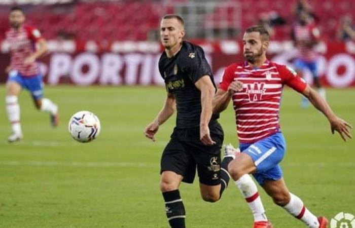 غرناطة يهزم ألافيس ويتصدر الدوري الإسباني