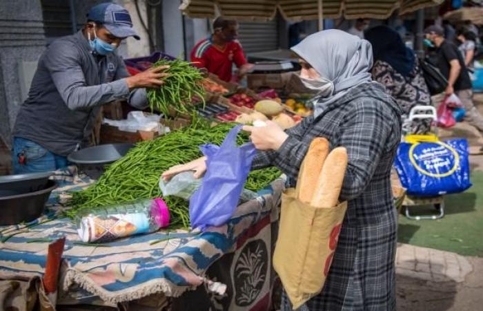 الاقتصاد الموازي يُشغل نصف العاملين في الجزائر