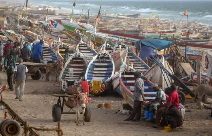 الاحتياطي الأجنبي الموريتاني يأكله الاختلاس وسوء الإدارة