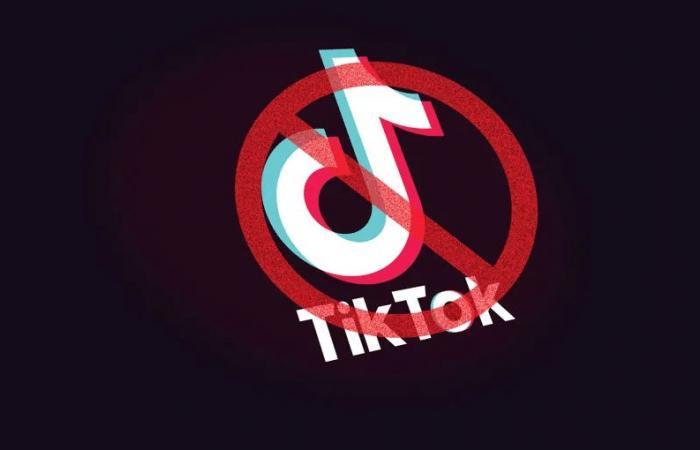باكستان ترفع الحظر عن تيك توك بعد التعهد بتقييد المحتوى غير الأخلاقي