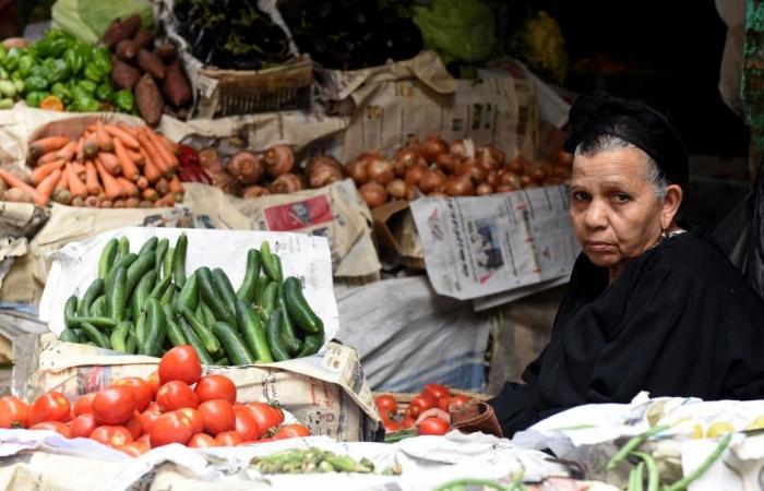 عُصفورة البنك التجاري والدين الخارجي المصري