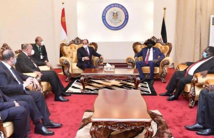 """السيسي يحدد رؤية مصر لـ""""مستقبل النيل"""""""