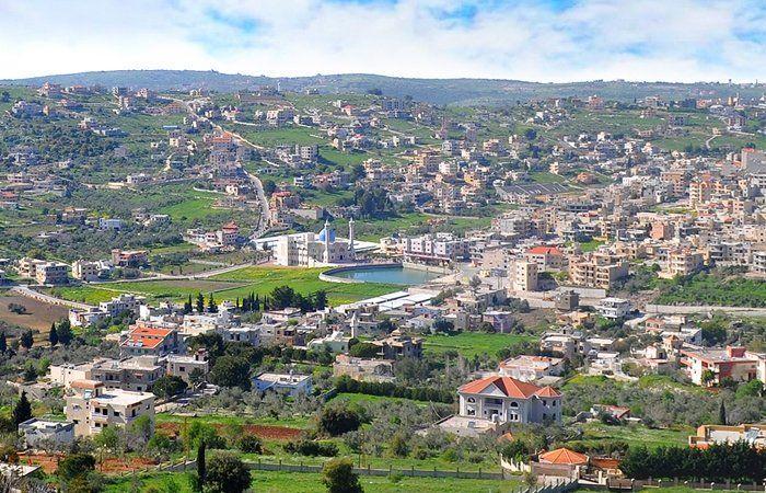 رصد حمى قلاعية في قضاء بنت جبيل