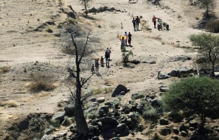 نار على الحدود.. ميليشيا إثيوبية تستهدف مزارعين سودانيين