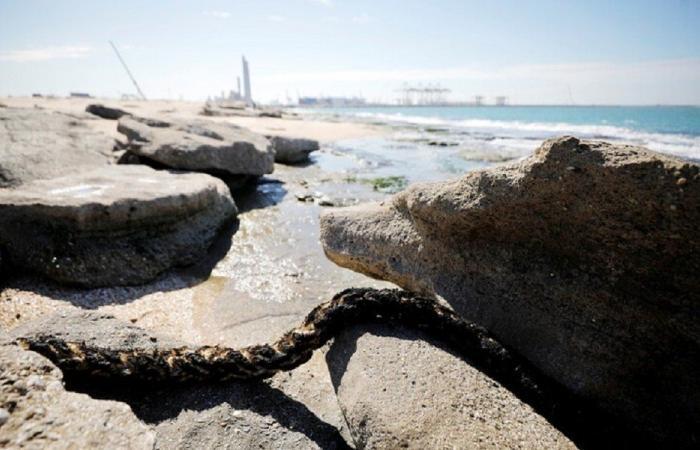 """كارثة التسرب النفطي… """"تحذير من أكل أسماك المتوسط"""""""