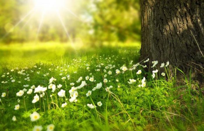 طقس ربيعيّ دافئ في عيد الفصح!