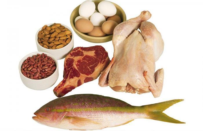 كثرة البروتينات وانعكاساتها على الجسم