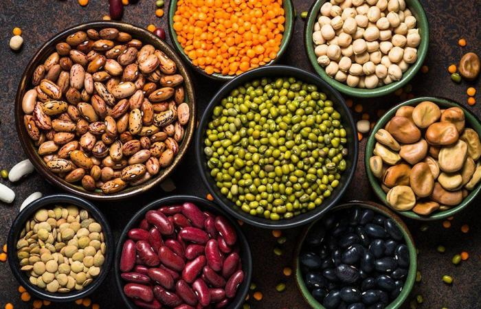 الفاصوليا مصدر غنيّ بالبروتين