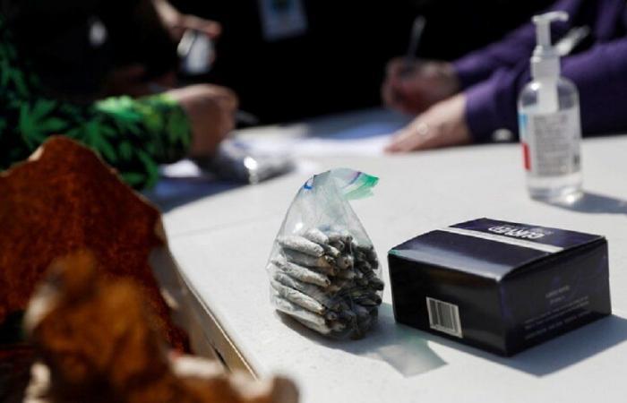 نشطاء يوزعون الماريجوانا في وسط نيويورك