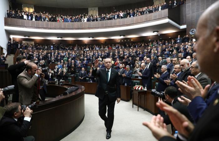 """خبيران يكشفان أهداف أردوغان من """"مجموعة صداقة"""" مصر"""