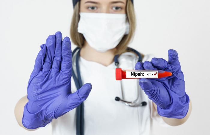 سيناريو شبيه بكورونا.. هل يتحول فيروس نيباه لجائحة؟ الصحة العالمية توضح