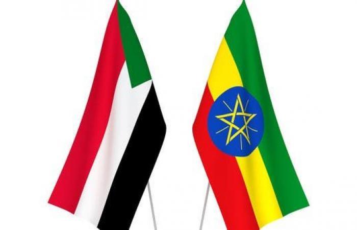 السودان: تصريحات إثيوبيا بتدريبنا معارضين والدفع بهم في تيغراي لا صحة لها