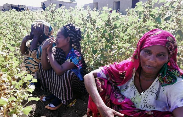رئيس الكنيسة الأرثوذكسية بإثيوبيا يتهم الحكومة بارتكاب مجازر في تيغراي