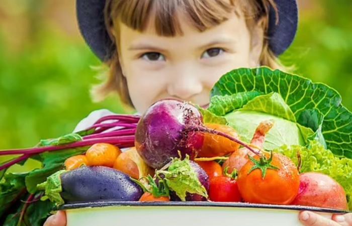 هل النظام النباتي يمثل خطرا على صحة الأطفال؟ دراسة تجيب
