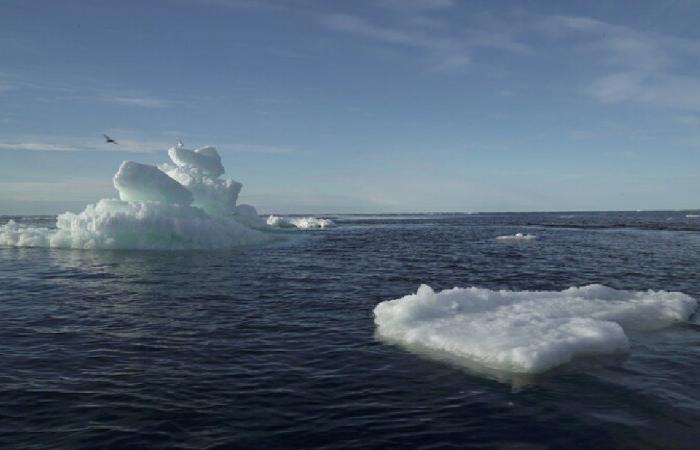 الجليد في القطب الشمالي يذوب أسرع بمرتين